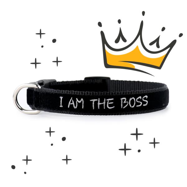 Collare ZUKY I am the boss