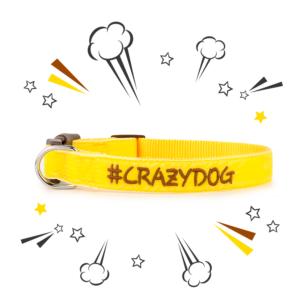 Collare ZUKY Crazy Dog